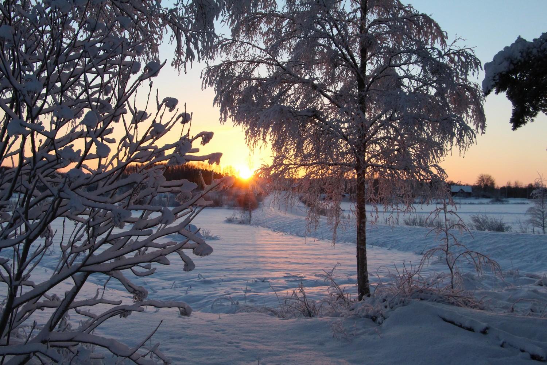 vinter 2013_2