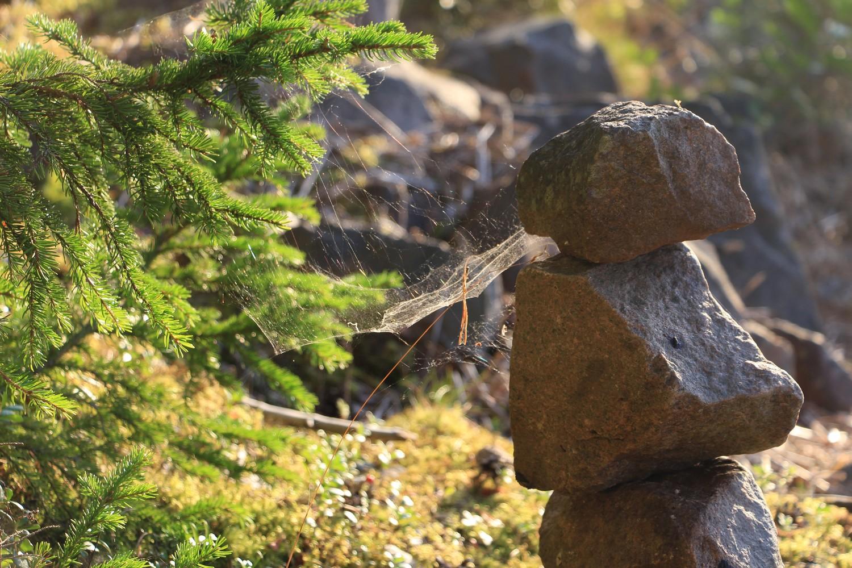 sten och väv