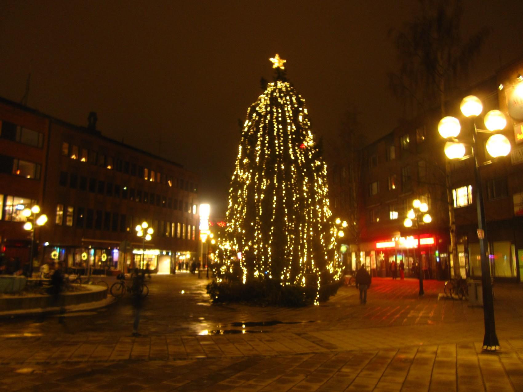 julgran umeå 2013