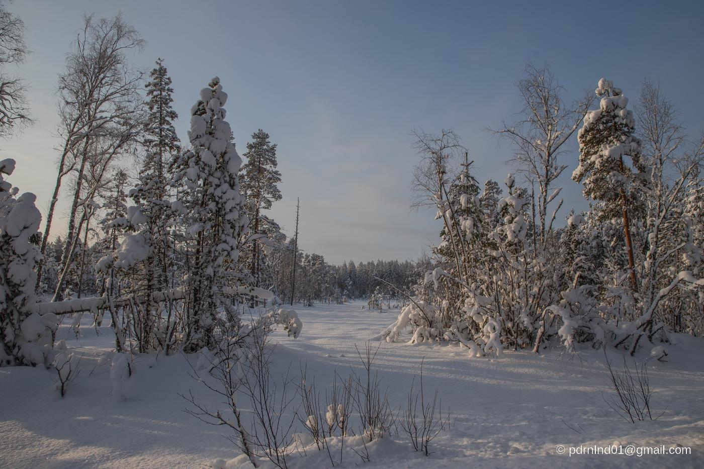 Naturen i vinterskrud i Oxkangar