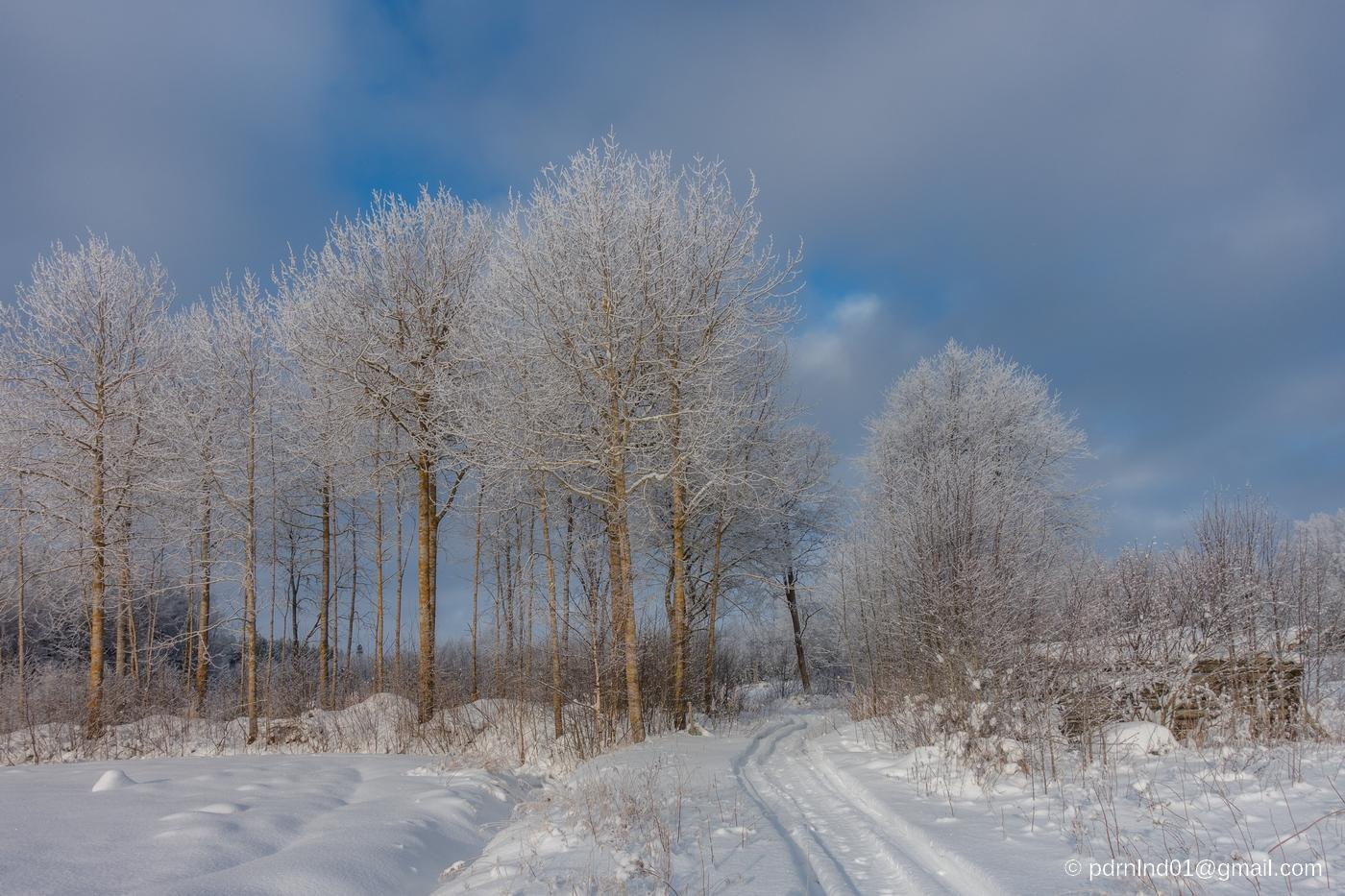 Vinterspår i Oxkangar
