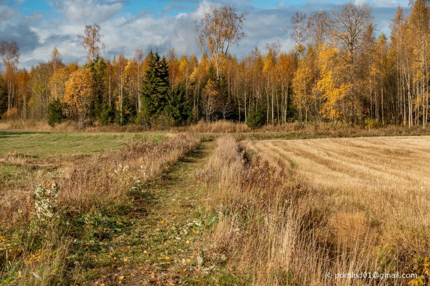 Vägen genom Päran i Oxkangar